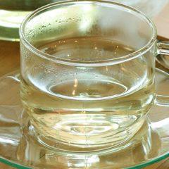 煎茶 ¥600